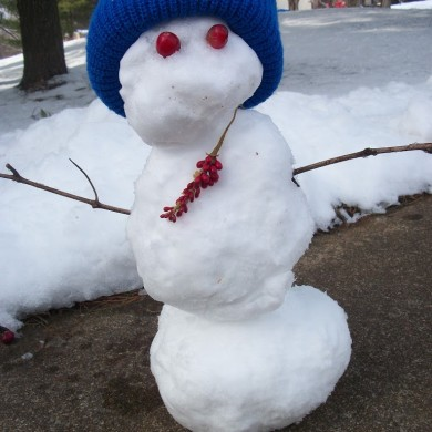 The Story Of How A Wee Man Saved The Day From the Big Bad Mr. Winter