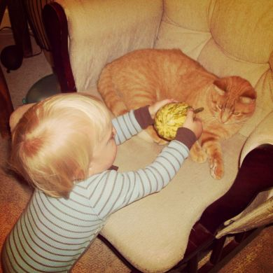 Samuel and the Kitty (and the Gourd)
