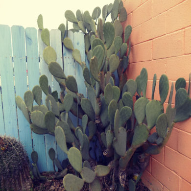 Of all the names you've been called, how to know who you really are